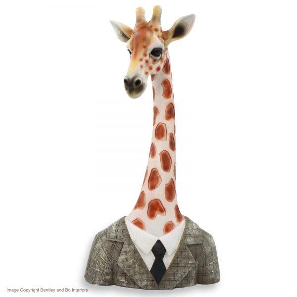 Giraffe in Jacket