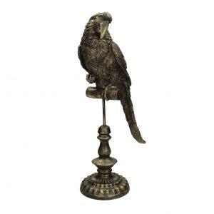 Gold Parrot