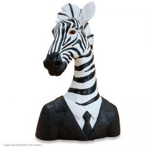 Zebra in Jacket